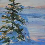 "WITT, MARILYN Indiana ""Nature's Christmas Tree"" oil painting   The late evening sun shining on this little spruce tree in my yard drew me to it.  The shadows on the snow made it irresistible."