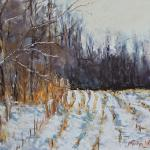 "WITT, MARILYN Indiana ""Winter in the Corn Belt"" 9x12 pastel The harvested cornfields around my home, especially when covered by a new layer of snow, are one of my favorite subjects."