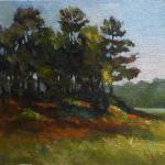 "COX, RUTH South Carolina ""Vereen Memorial Gardens"" oil"